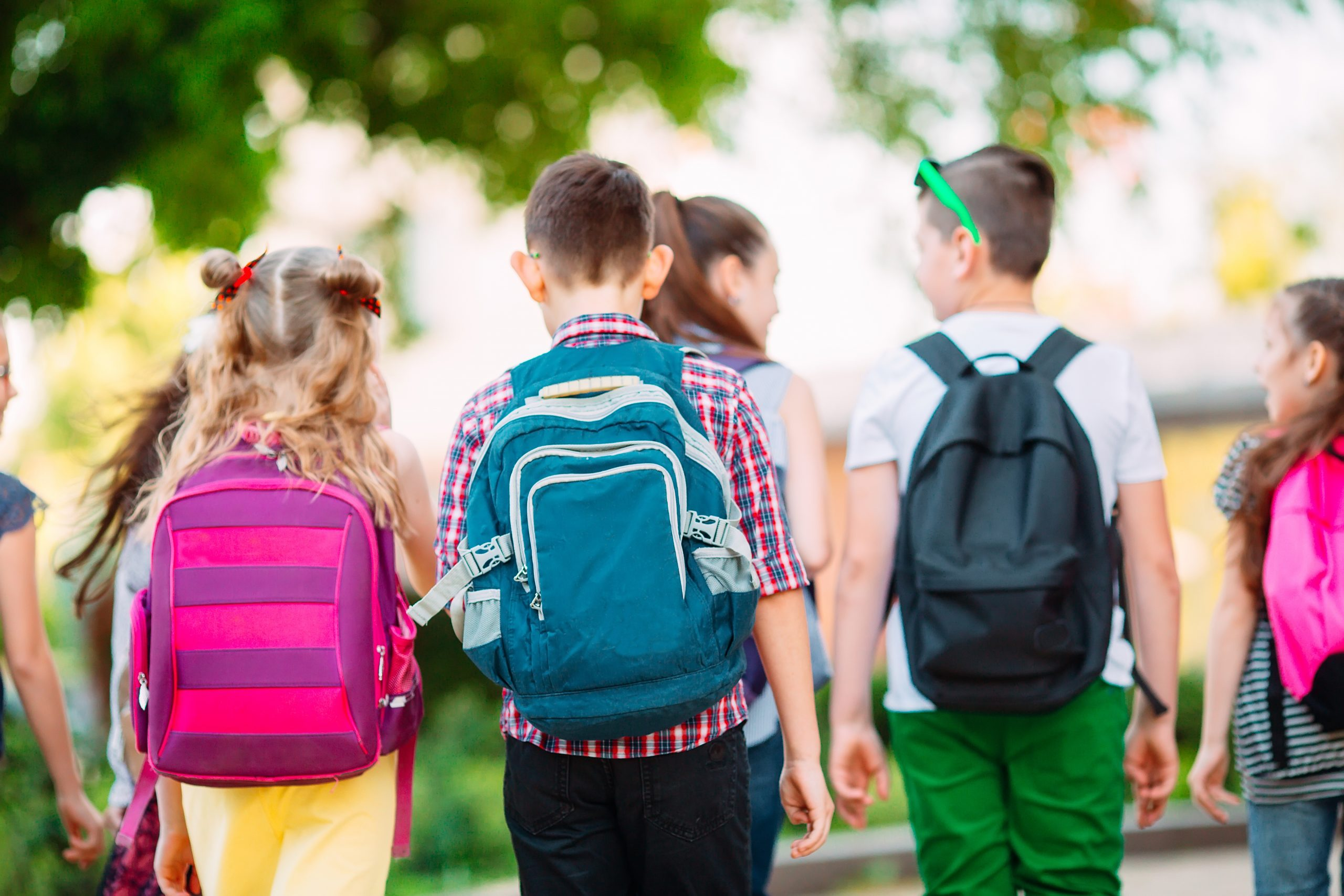 Group of kids going to school together